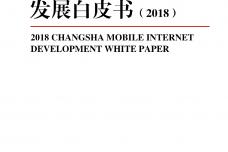 2018长沙市移动互联网发展白皮书_000001.png