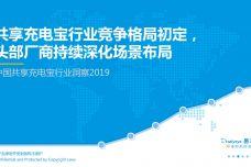 2019中国共享充电宝行业洞察_000001.jpg