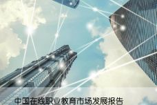 2019中国在线职业教育市场发展报告_000001.jpg