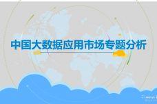 2019中国大数据应用市场专题分析_000001.jpg