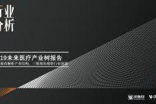 2019中国未来医疗产业树报告_000001.jpg