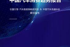 2019中国汽车消费趋势报告_000001.jpg