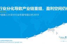 2019中国第三方支付行业年度专题分析报告_000001.jpg