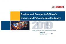 2019中国能源化工产业发展报告4_000001.jpg