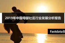 2019年中国母婴社区行业发展分析报告_000001.jpg