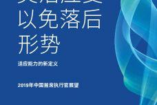 2019年中国首席执行官展望_000001.jpg