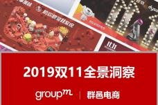 2019年双11全景洞察报告_page_01.png