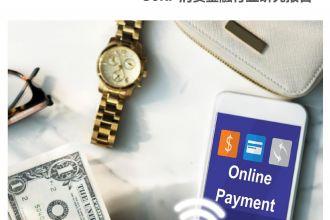2019年消费金融行业研究报告_000001.jpg