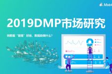 2019年DMP市场研究_000001.jpg