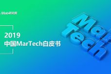 2019年MarTech白皮书_000001.jpg