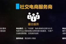 2019社交电商白皮书-简版_000024.jpg
