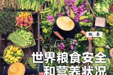2020世界粮食安全和营养状况(中文)_000001.png