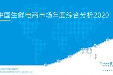 2020中国生鲜电商市场年度综合分析_000001.jpg