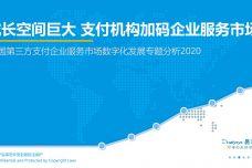2020中国第三方支付企业服务市场数字化发展专题分析_000001.jpg