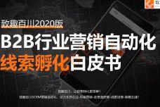 2020年B2B行业营销自动化线索孵化白皮书_000001.jpg