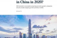 2020我们对中国有什么期望_page_12.png