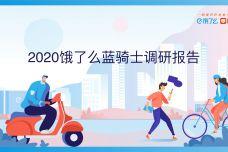 2020蓝骑⼠调研报告_000001.jpg