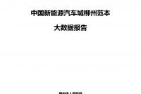 2021年中国新能源汽车城柳州范本大数据报告_1.png