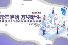 5G行业数据洞察白皮书_000001.jpg