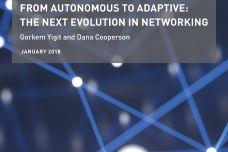 Adaptive-networks-WP_000.jpg