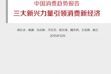 BCG_The_New_China_Playbook_Dec_2015_CHN_000001.png