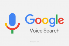 Google-Voice-Search-History-1.png