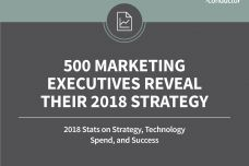 Marketing-Executives-Study-Research-2018_000.jpg
