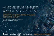 ai-momentum-maturity-success-models-109926-01.jpg