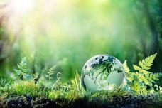 carbon-footprint-greenhous-gas-emissions-illustraion-1.jpeg