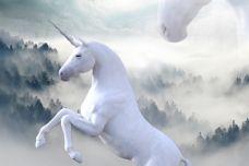 unicorn-1737897_960_720.jpg
