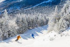 winter-ski-east-coast_s.jpg